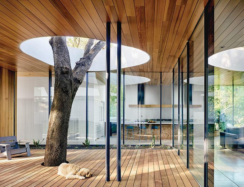 A Home Built Around A Tree Austin Monthly Magazine